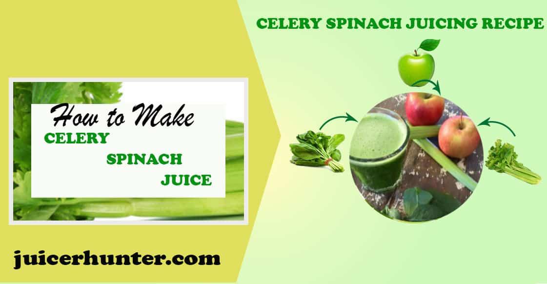 Celery Spinach recipe